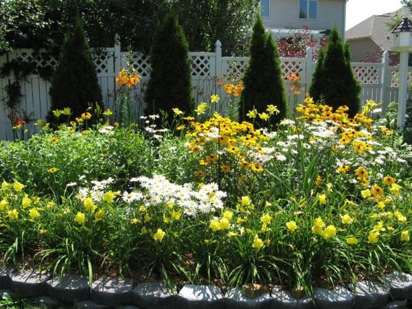 2006 Back Garden