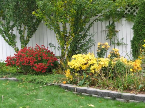 2006 Fall Back Garden, left