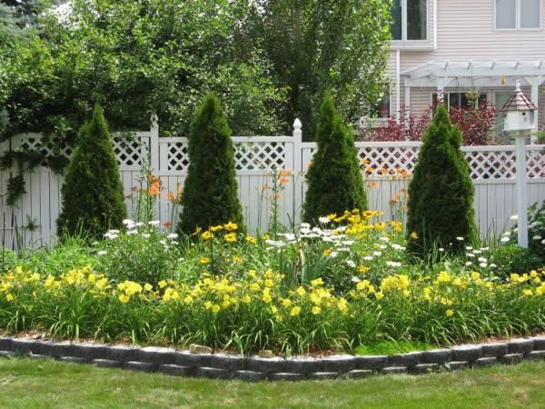 My Back Garden, July 1st 2006