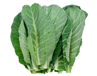 Superior How To Grow Collard Greens