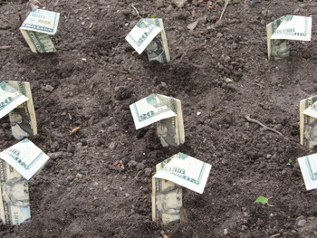 Grow Plants, Make Money
