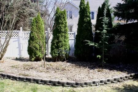 Empty Cleaned Garden