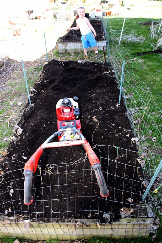 My garden bed after less than 5 minutes of action with my new Mantis tiller.